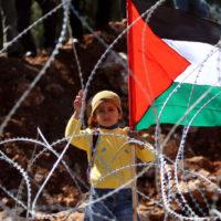 Pelo reconhecimento do Estado Palestino