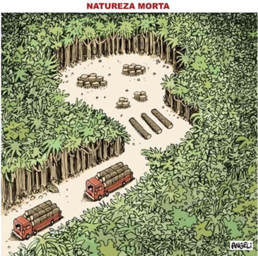 Verde que te quero vermelho: o que o novo Código Florestal tem a ver com a Rio+20?