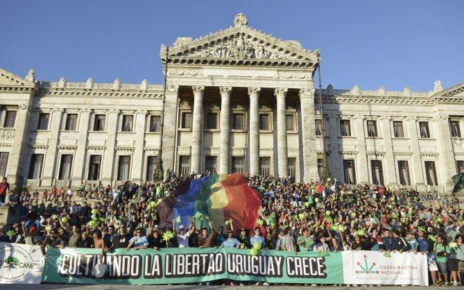 Juntos pela legalização!