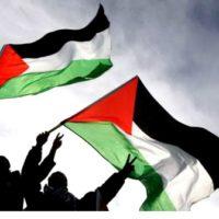Outra vez Gaza! Parem com o Genocídio!