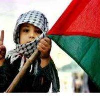 Todo apoio ao Povo Palestino!
