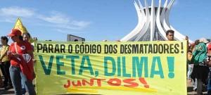 protesto contra o novo código florestal - 2012